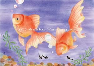 金魚は優雅やね~